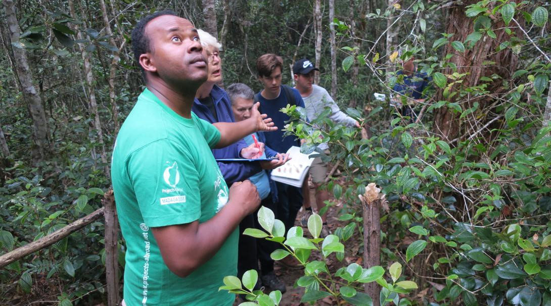 While working in Africa with animals, volunteers and staff monitor birds during a rainforest walk in Madagascar.